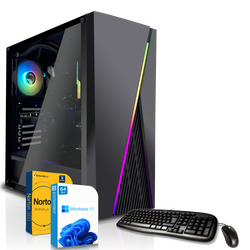 Basic Gaming PC | AMD Athlon 200GE 2x3.2GHz | 8 GB DDR4...